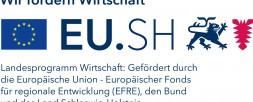 VisiConsult erhält Messeförderung von der Europäischen Union