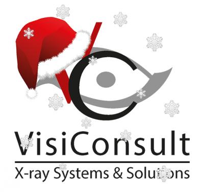 VisiConsult-Weihnachtslogo
